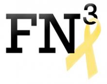yellow_fn3_logo